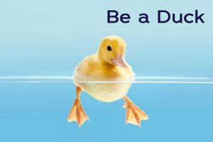 Be a duck