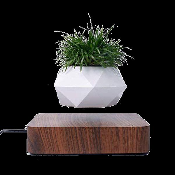 Levitating Plant Holder